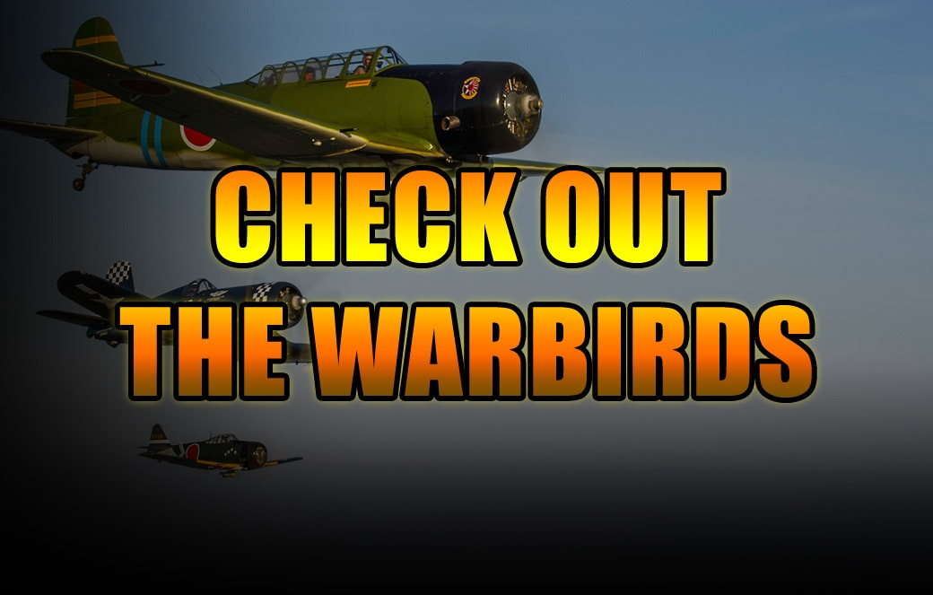 Check Out the Warbirds Button